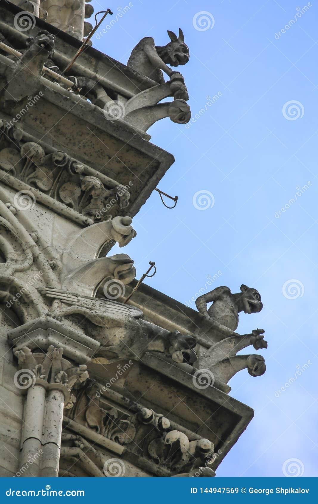 Нотр-Дам Парижа, Франции, gargoyls сидит и обозревает Париж