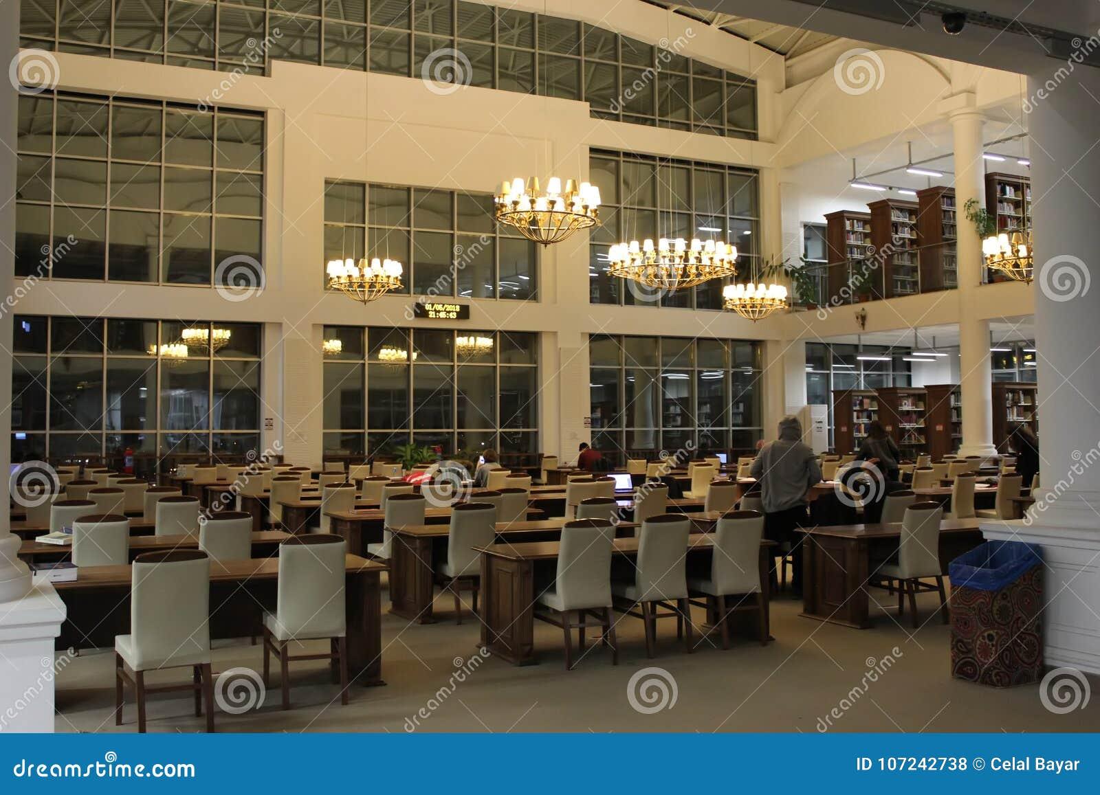 Ноча и библиотека