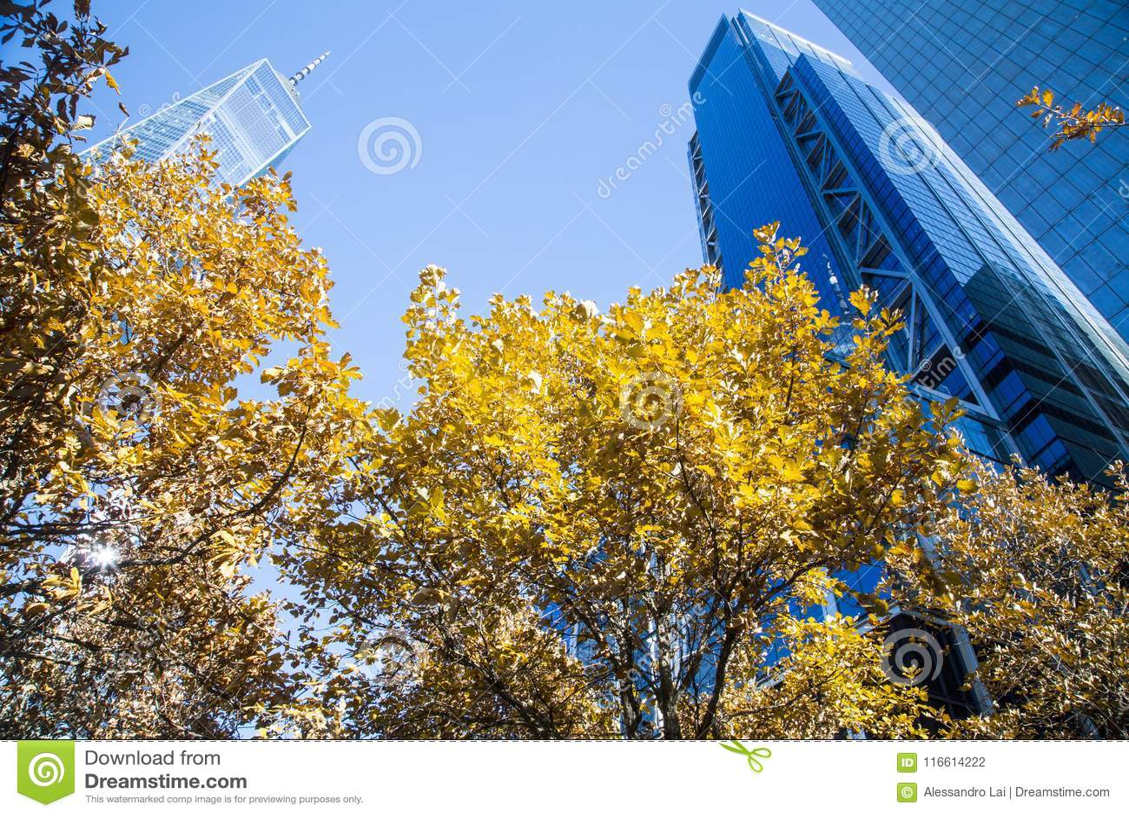 Нью-Йорк, более низкое Манхаттан и финансовый район