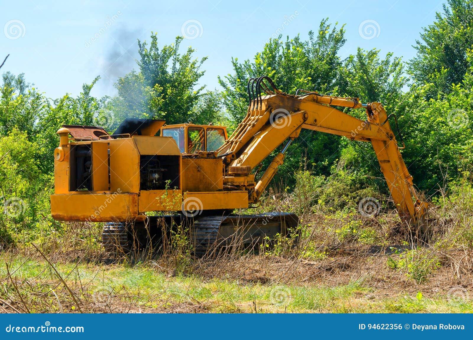 Обезлесение леса