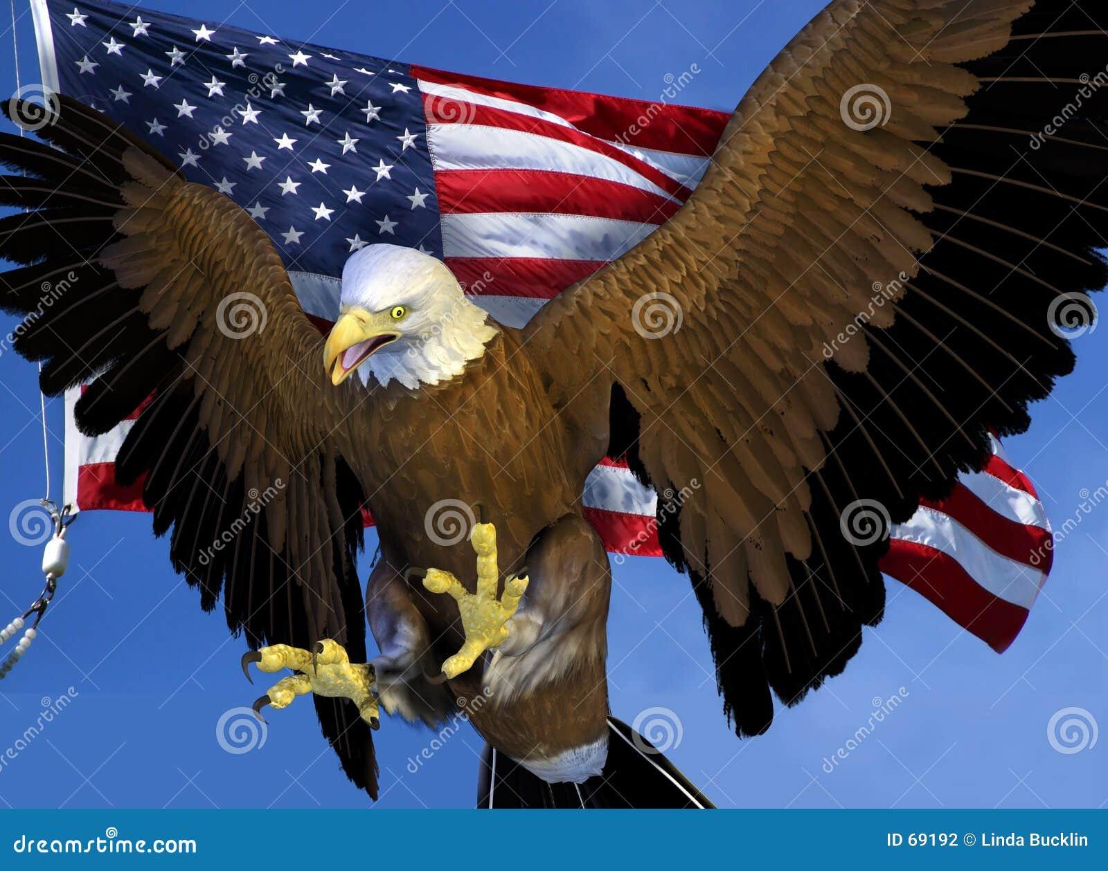 облыселый орел flag мы