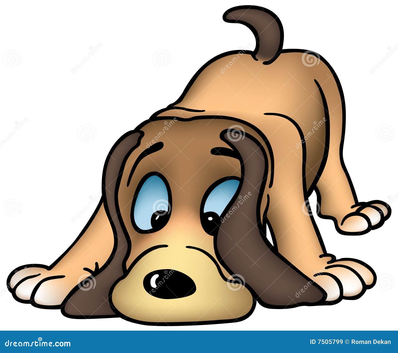 обнюхивать собаки