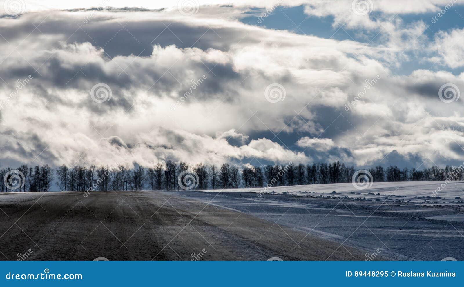 Обочина и лес зимы под драматические пасмурным и солнцем