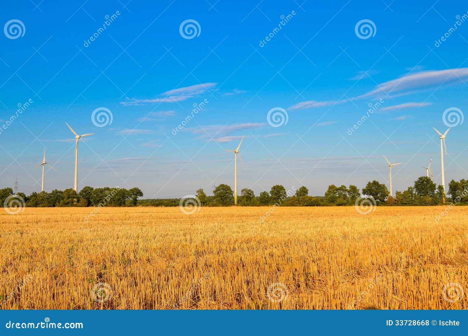 Обрабатываемая земля пшеничного поля