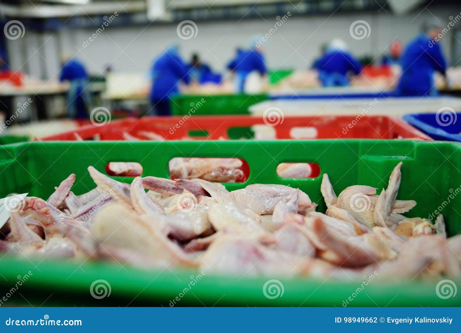 Обрабатывать птицы в пищевой промышленности