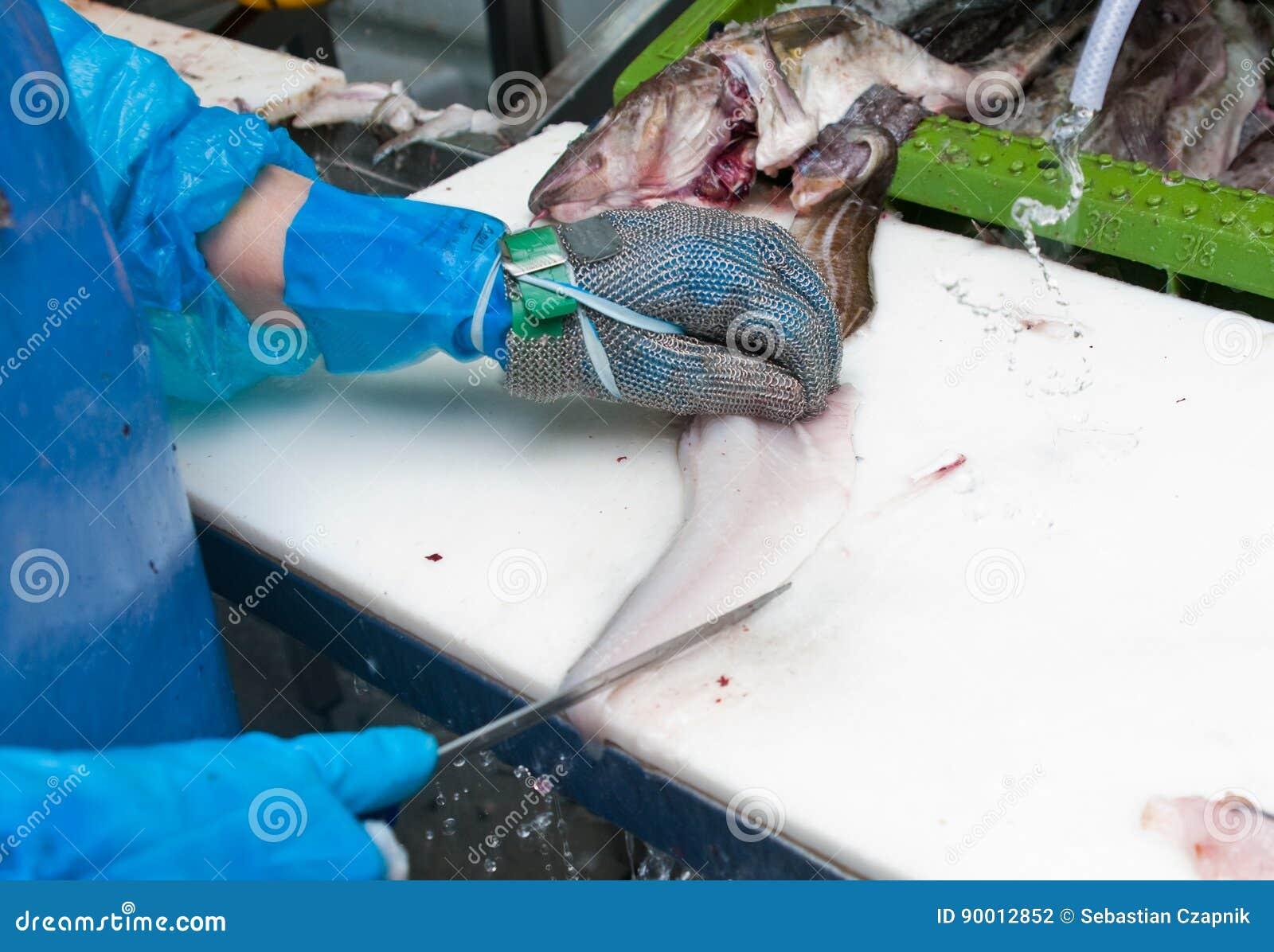 обрабатывать рыб фабрики
