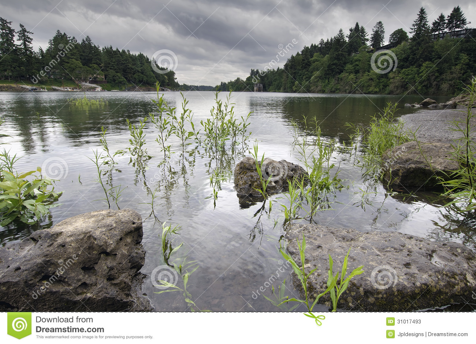Образование утесов на реке Willamette