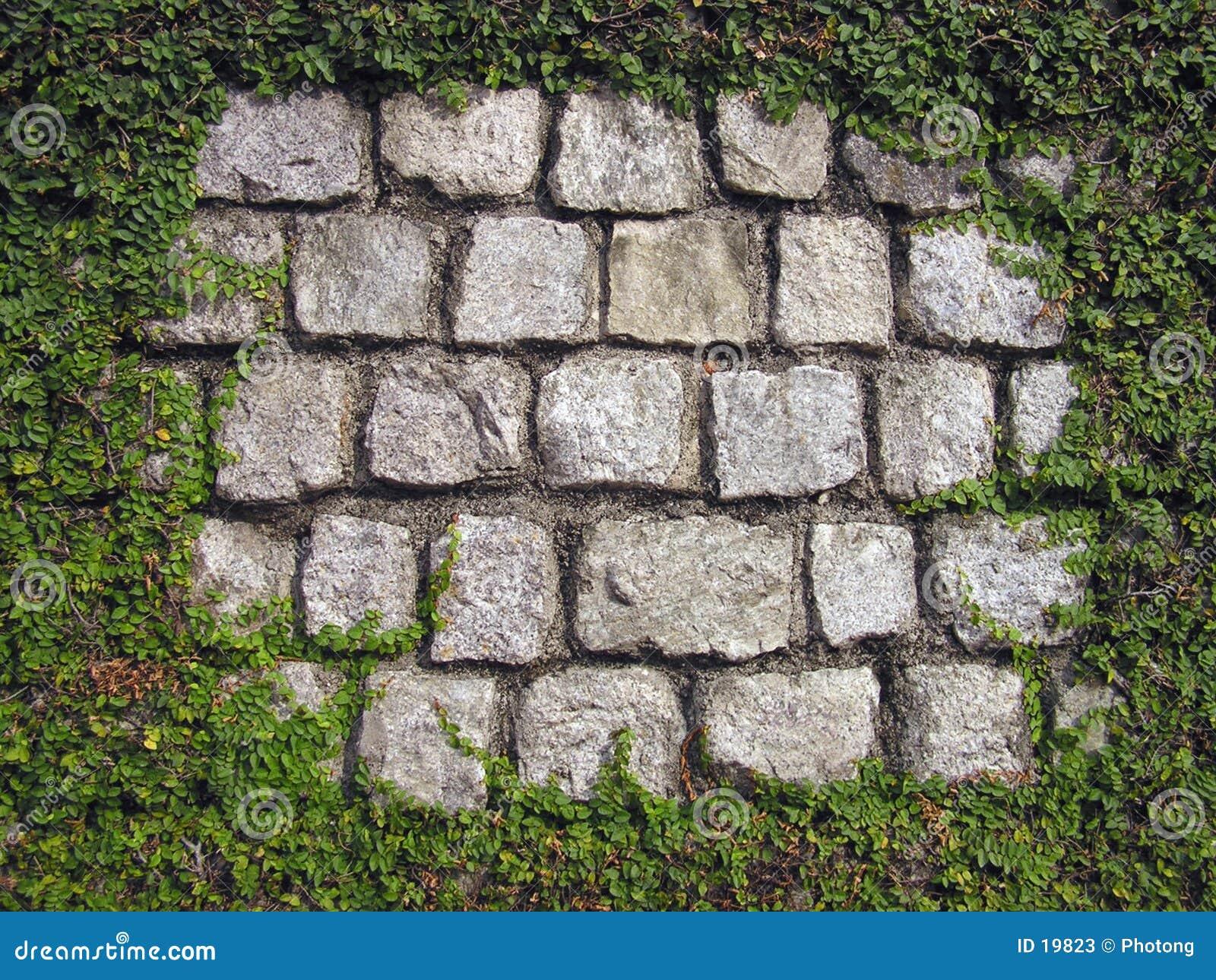 обрамленная стена