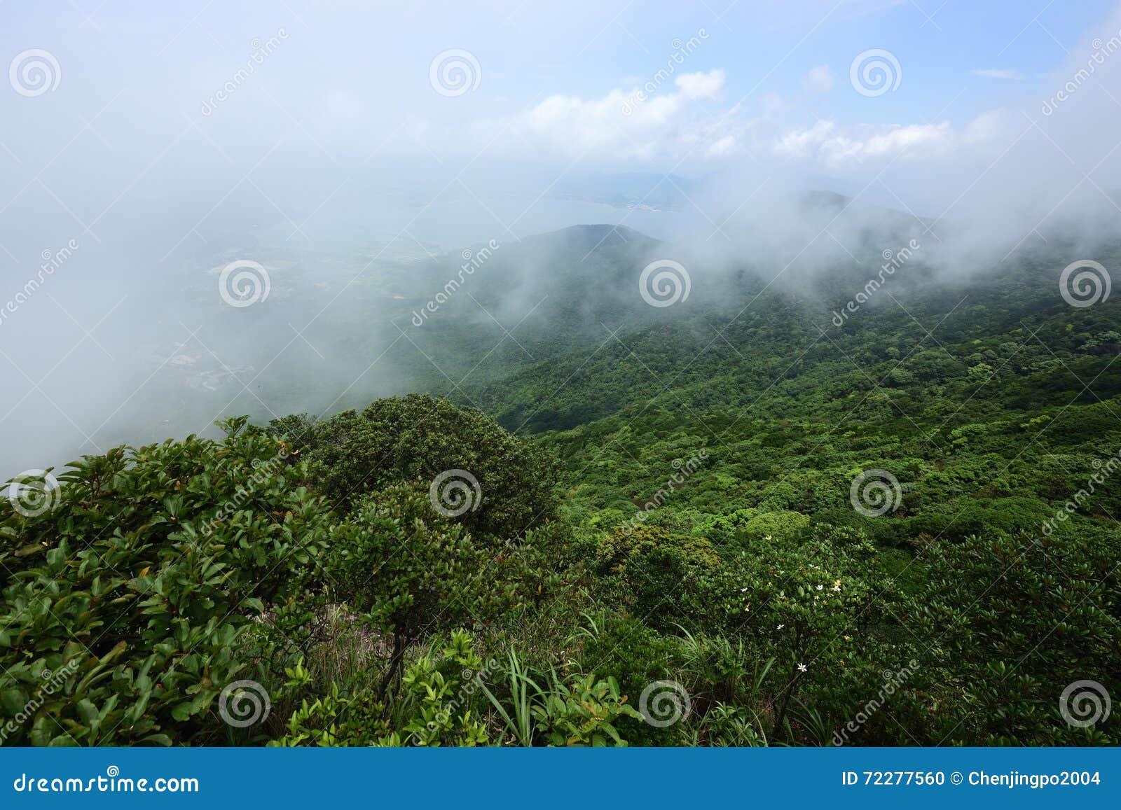 Download Облака на верхней части горы Стоковое Фото - изображение насчитывающей туман, сконденсировано: 72277560