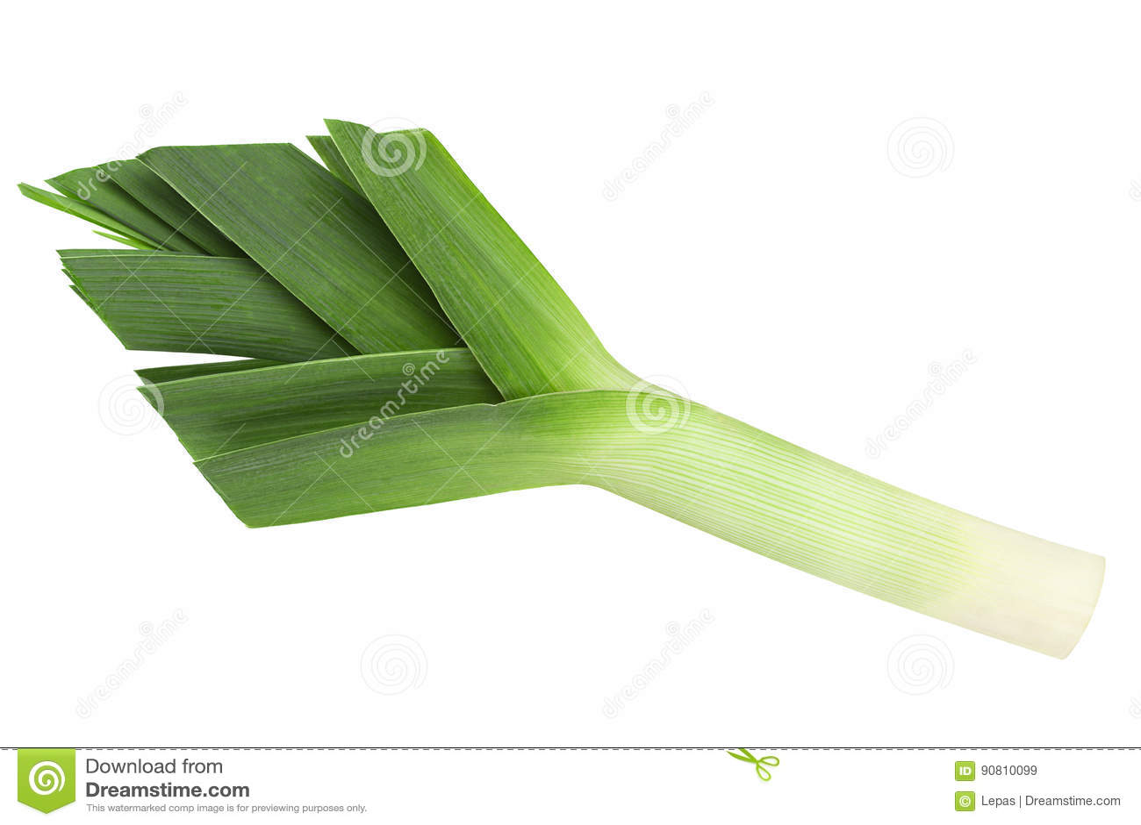 Овощ лук-порея на белизне