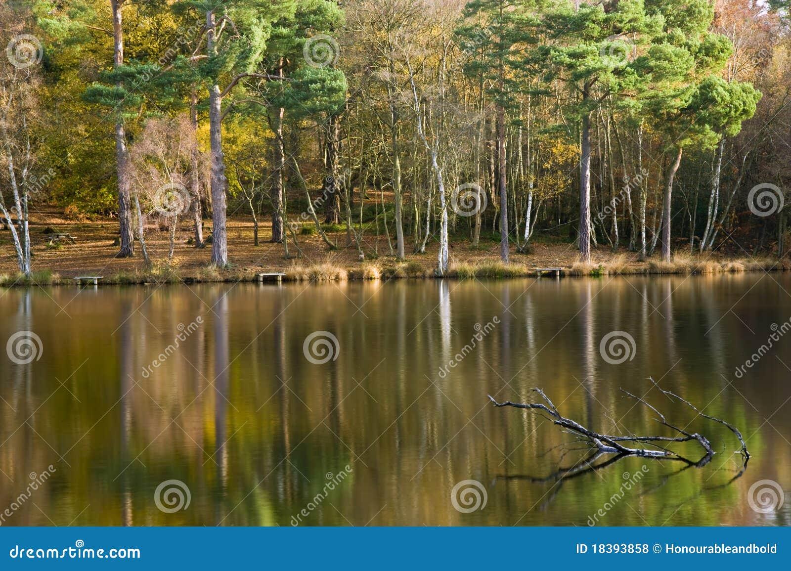 оглушать места озера падения осени цветастый