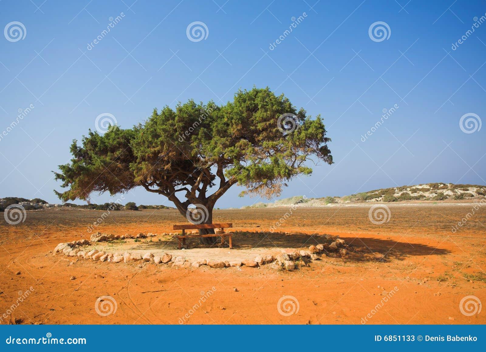 один вал камня пустыни