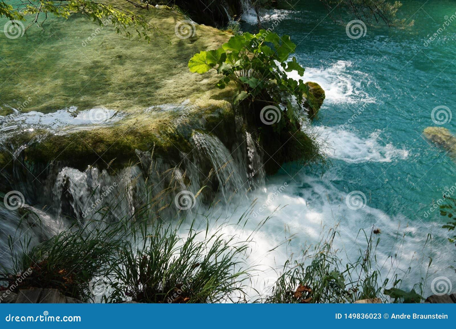 Озера Хорватия Plitvice национального парка - маленький водопад и завод в нем
