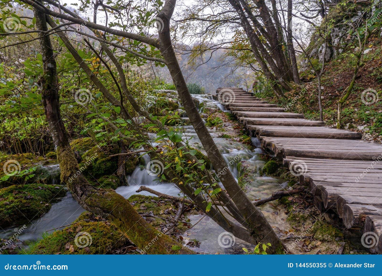 Озера Plitvice всходят на борт прогулки на шагах