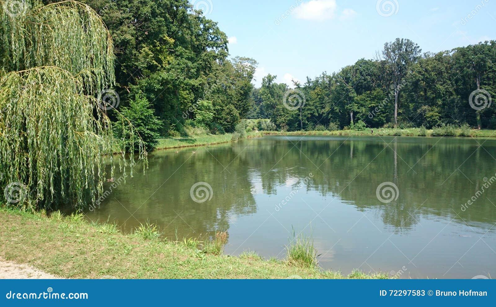 Download Озеро и лес в Maksimir стоковое изображение. изображение насчитывающей zagreb - 72297583