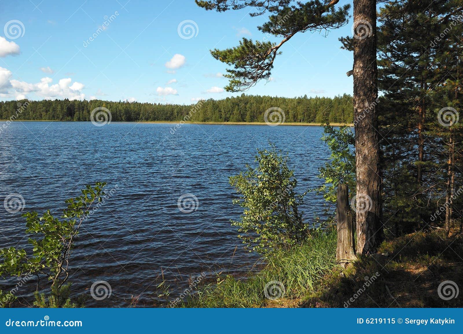 озеро поля