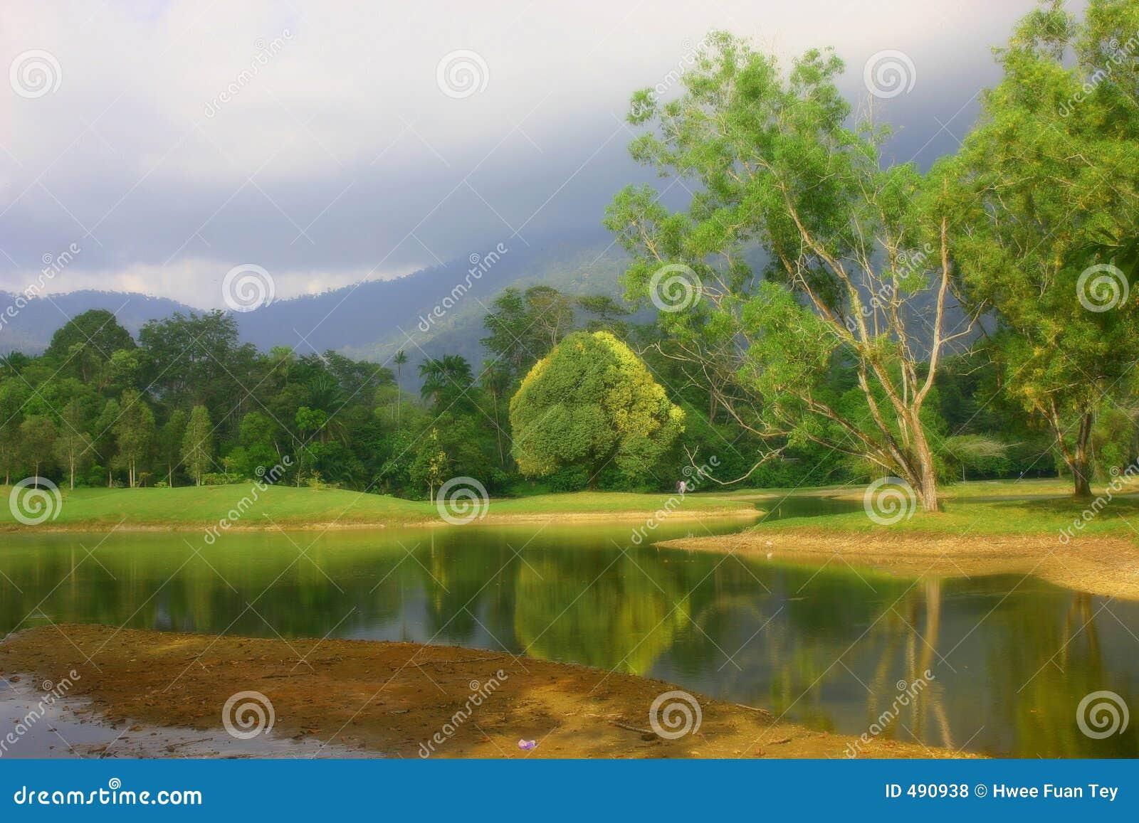 озеро сада