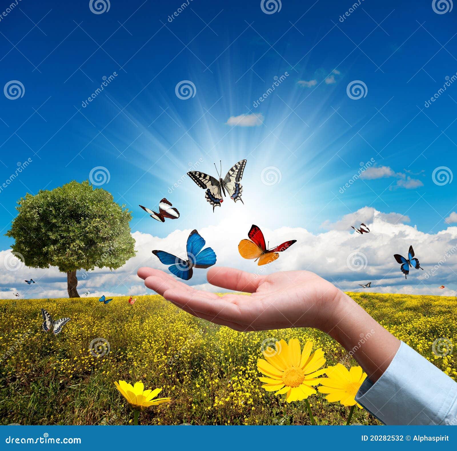 окружающая среда защищает