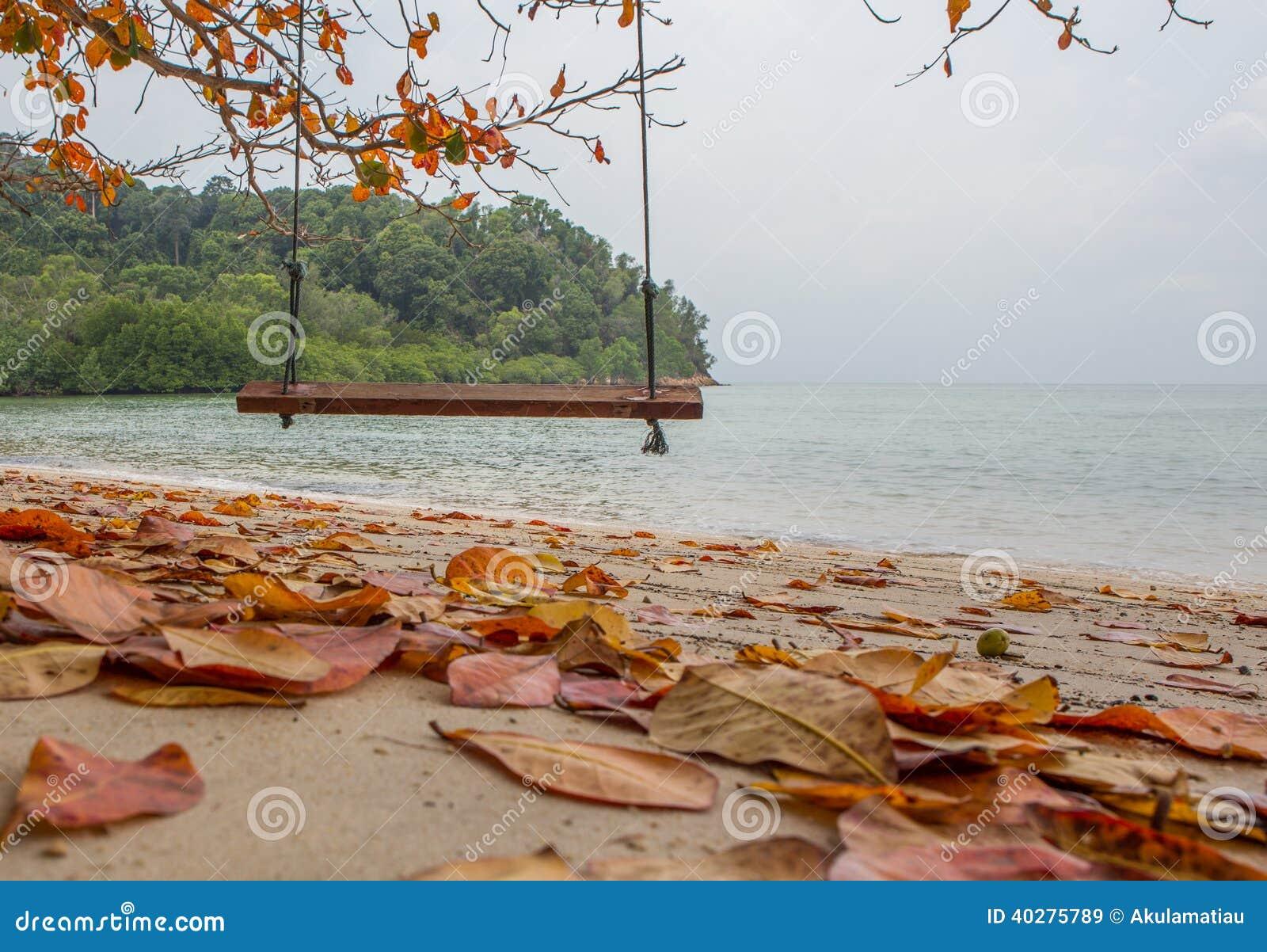 Опорожните качание пляжем i