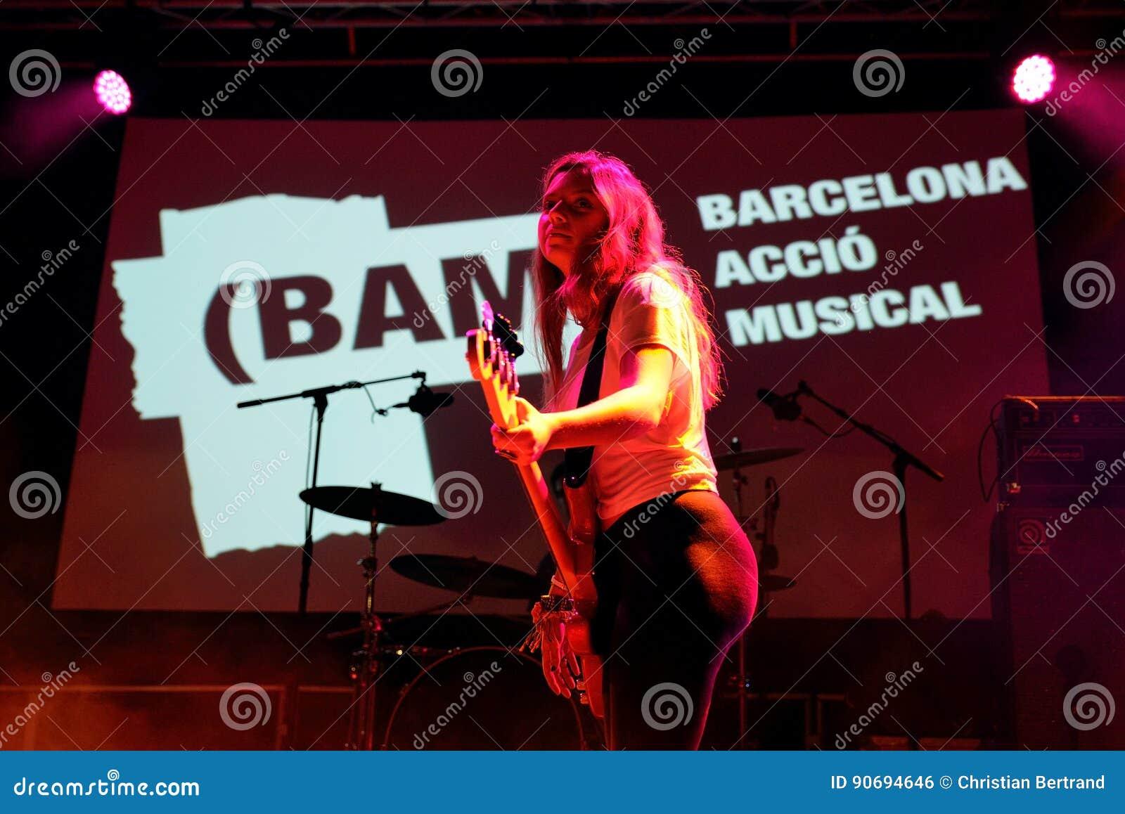 Оплачьте диапазон в концерте на фестивале BAM