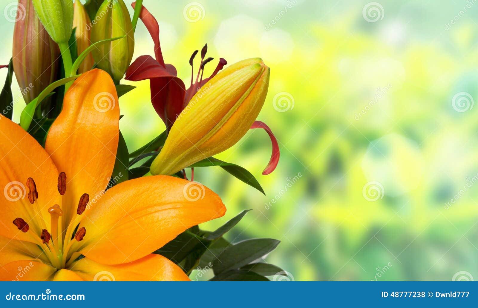 oranzhevie-lilii-buket