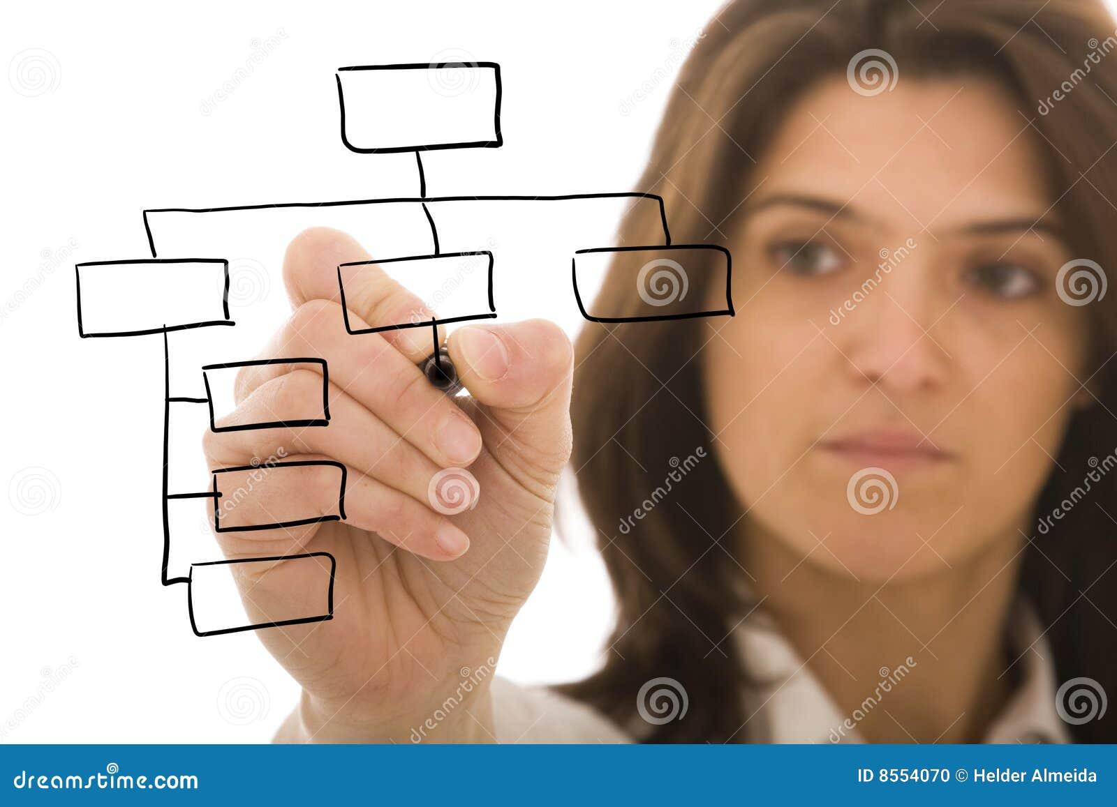организация диаграммы