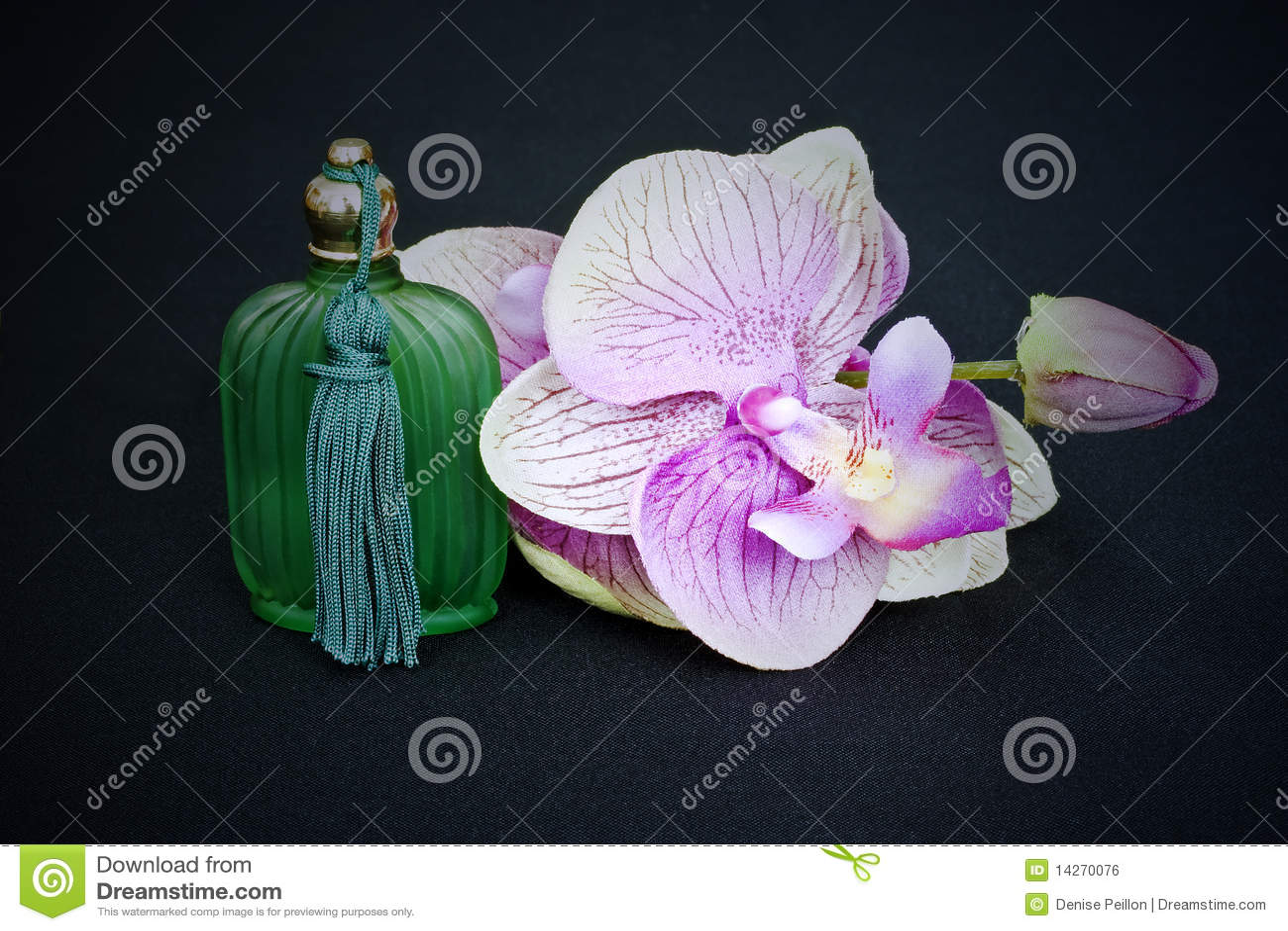 орхидея бутылочного стекла