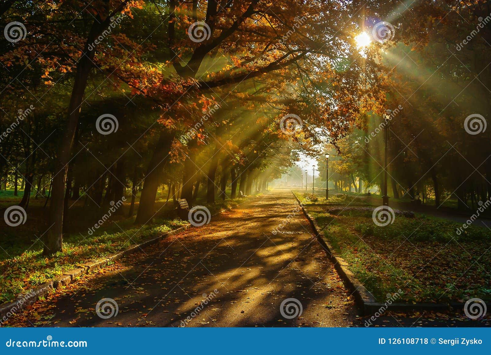 Осень в парке города Город Khmelnitsky