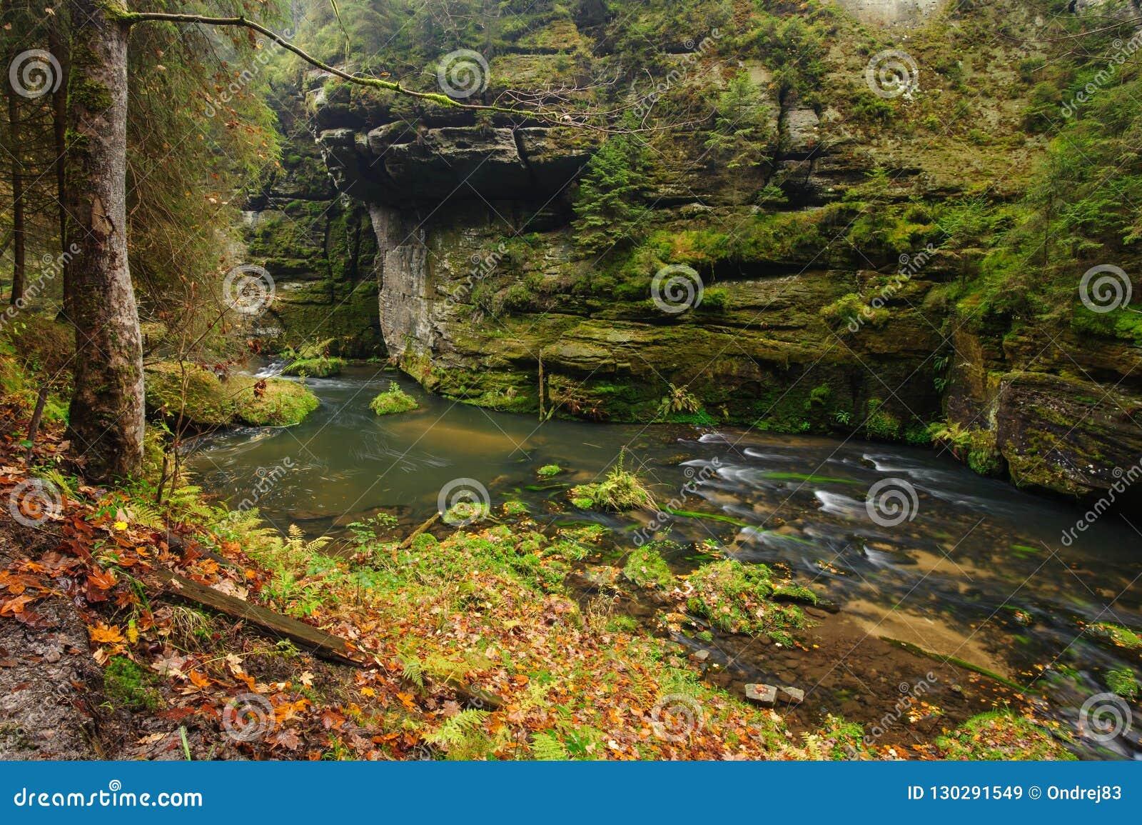 осень красит реку