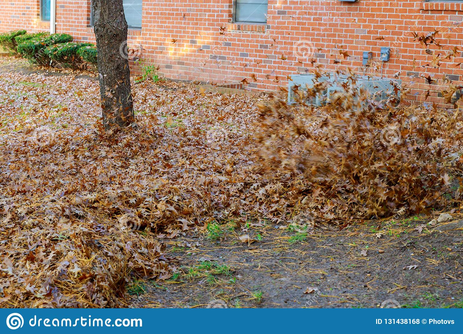 Осень работает воздуходувка лист человека работая