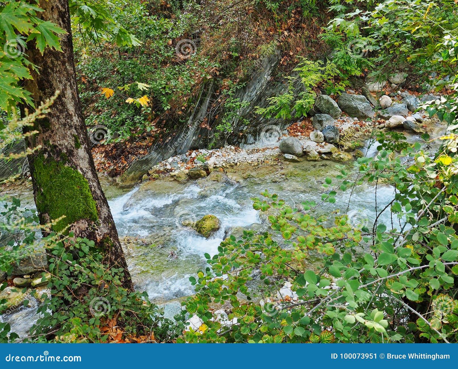 осень раньше сделала изображением гор горы приполюсный поток