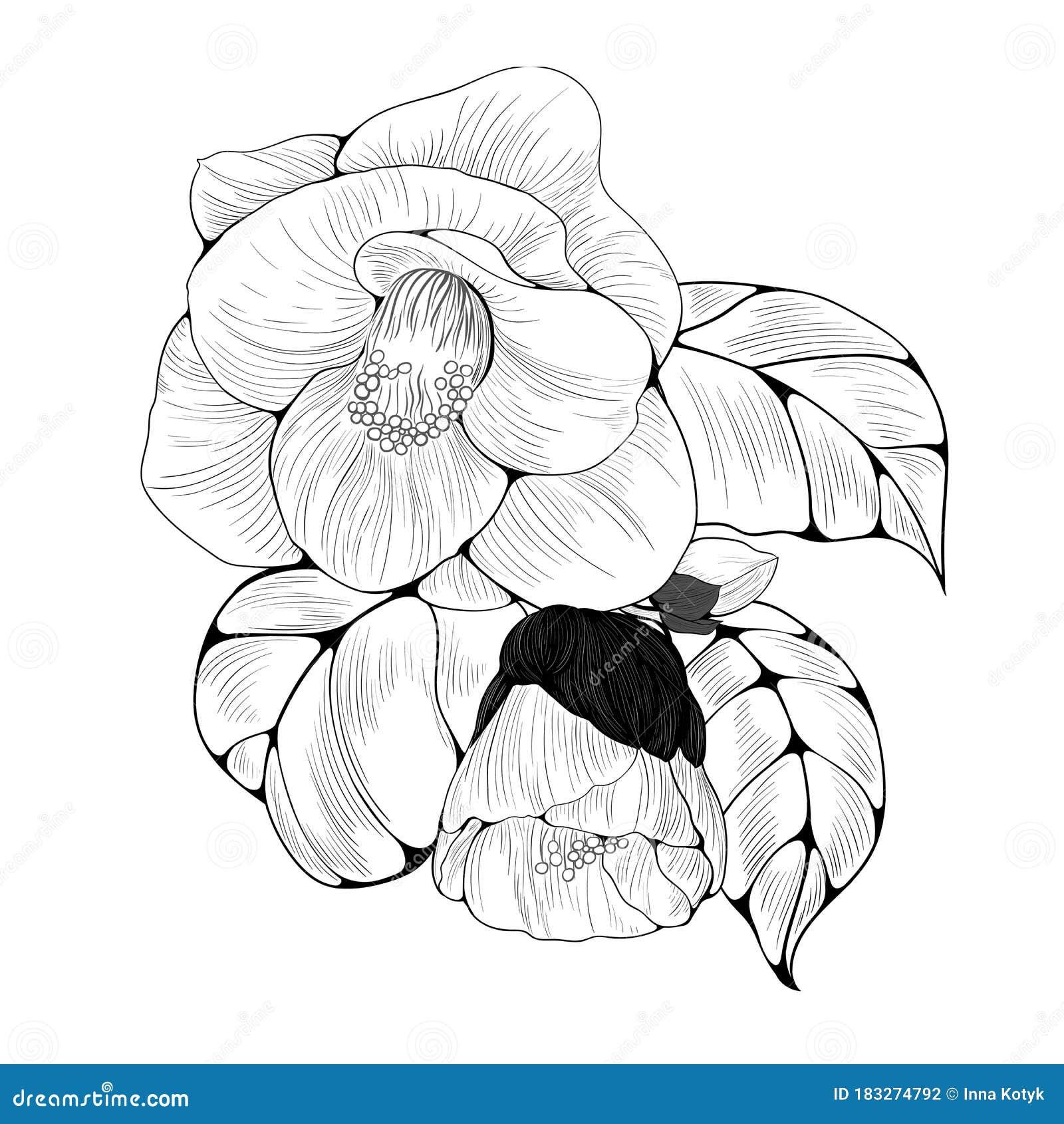 Plants Wallpaper Stock Illustrations 59 335 Plants Wallpaper Stock Illustrations Vectors Clipart Dreamstime