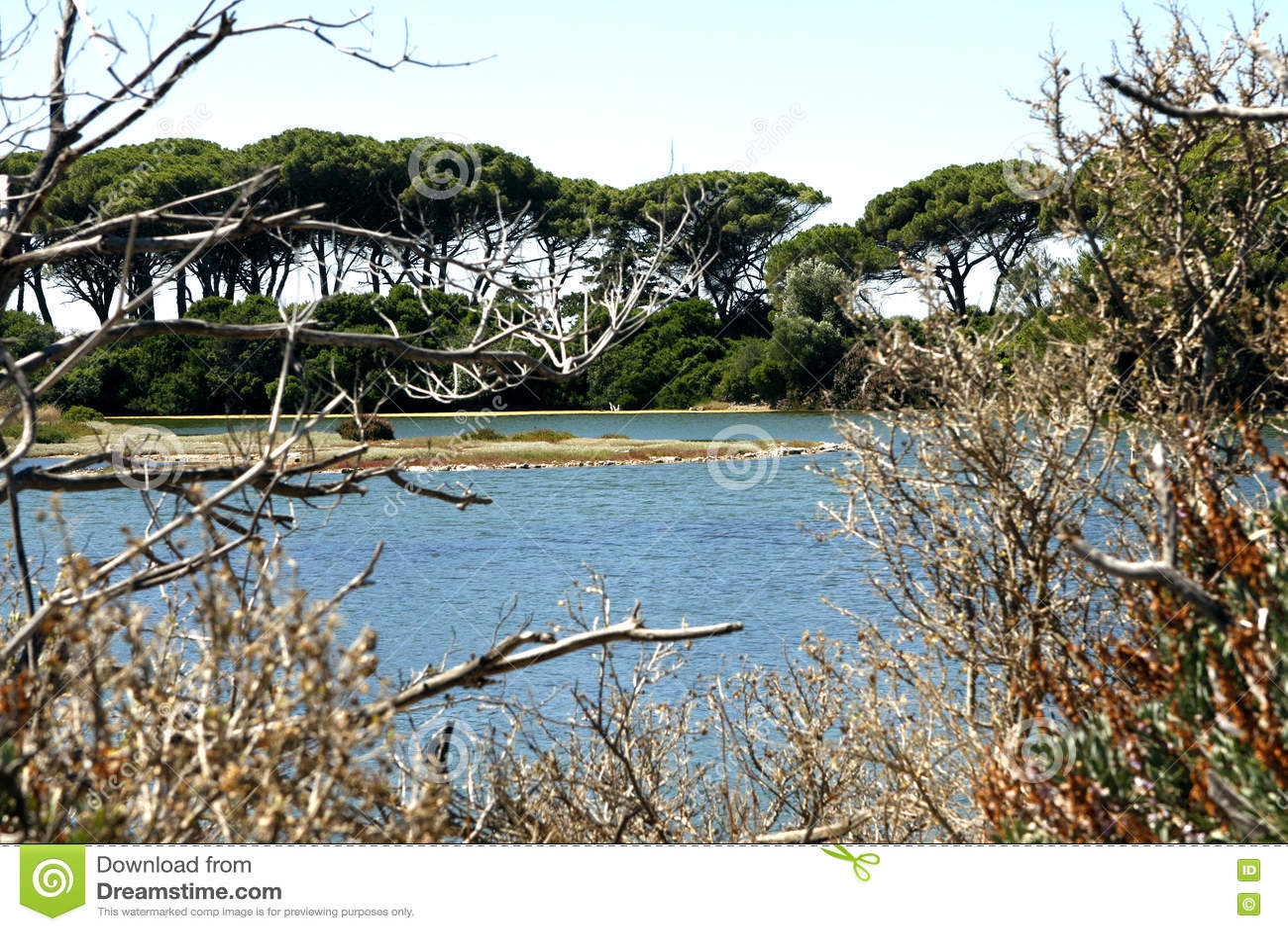 Острова Франция Lerins