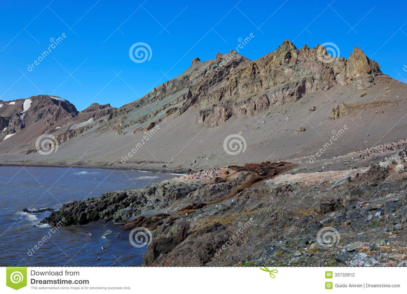 Острова Shetland пейзажа южные, Антарктика
