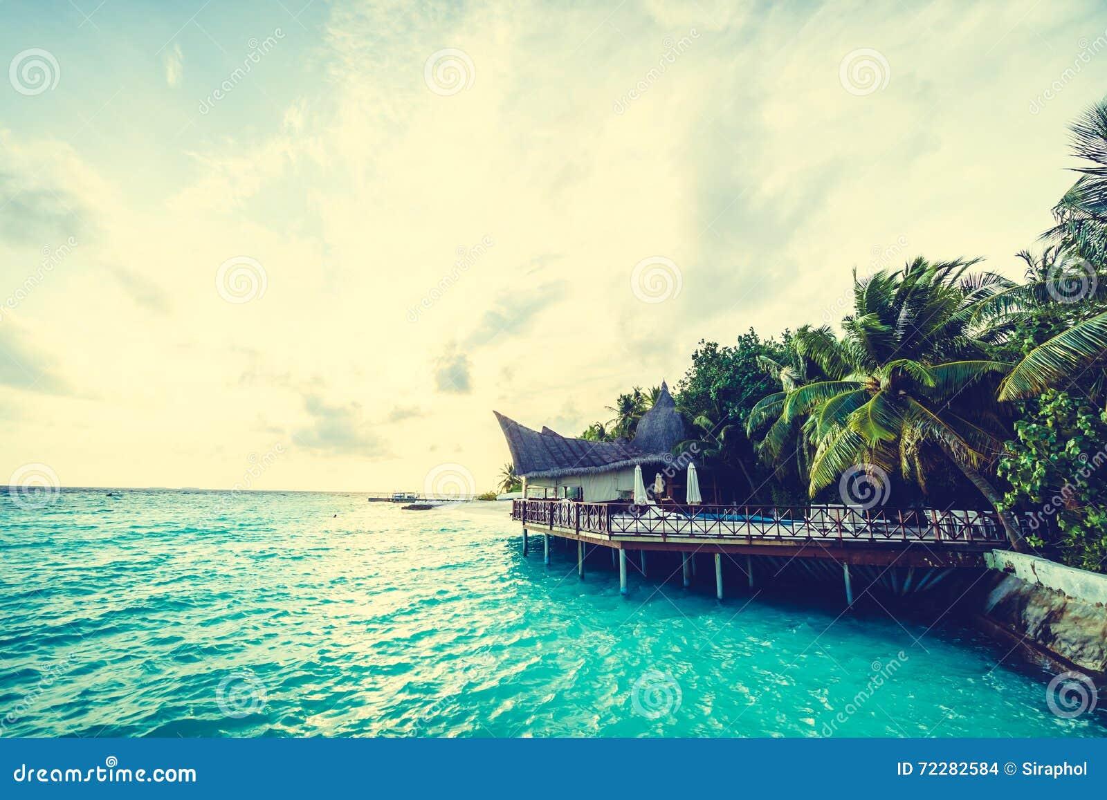 Download остров Мальдивы стоковое фото. изображение насчитывающей вал - 72282584