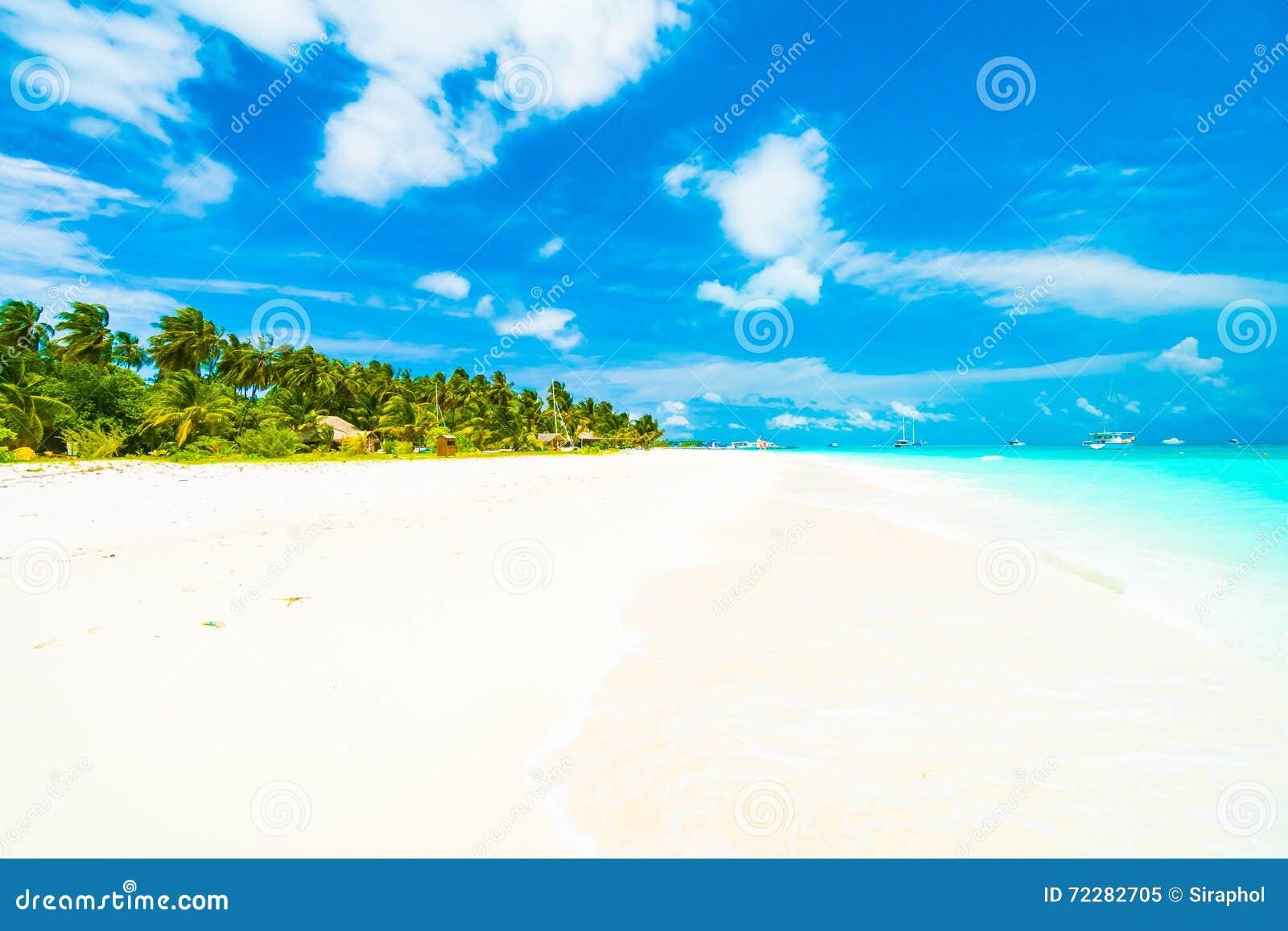 Download остров Мальдивы стоковое изображение. изображение насчитывающей океан - 72282705