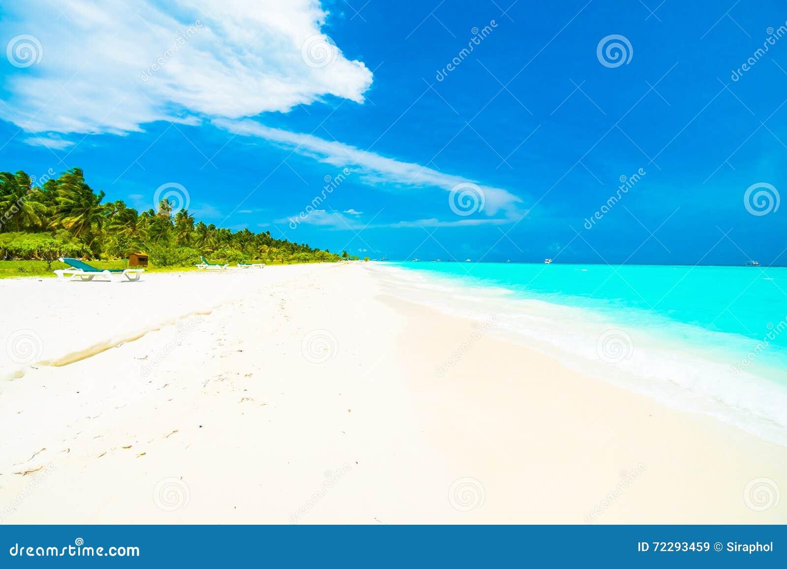 Download остров Мальдивы стоковое изображение. изображение насчитывающей природа - 72293459