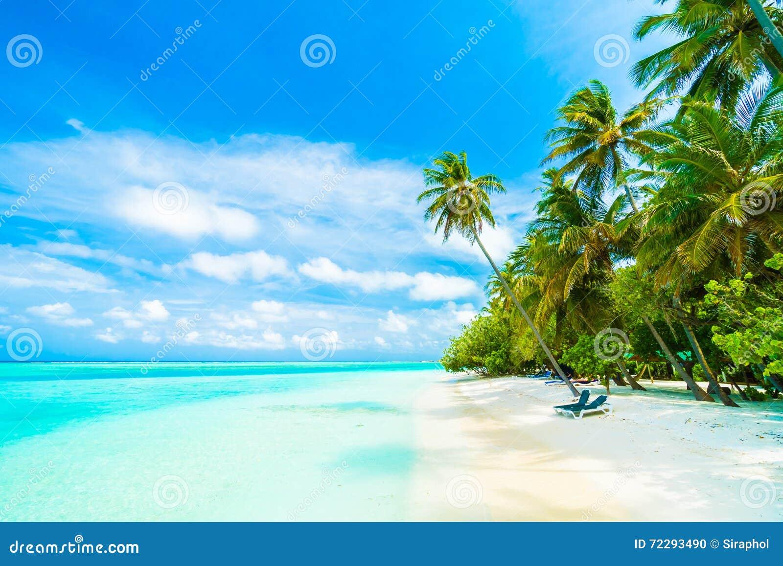 Download остров Мальдивы стоковое фото. изображение насчитывающей лето - 72293490