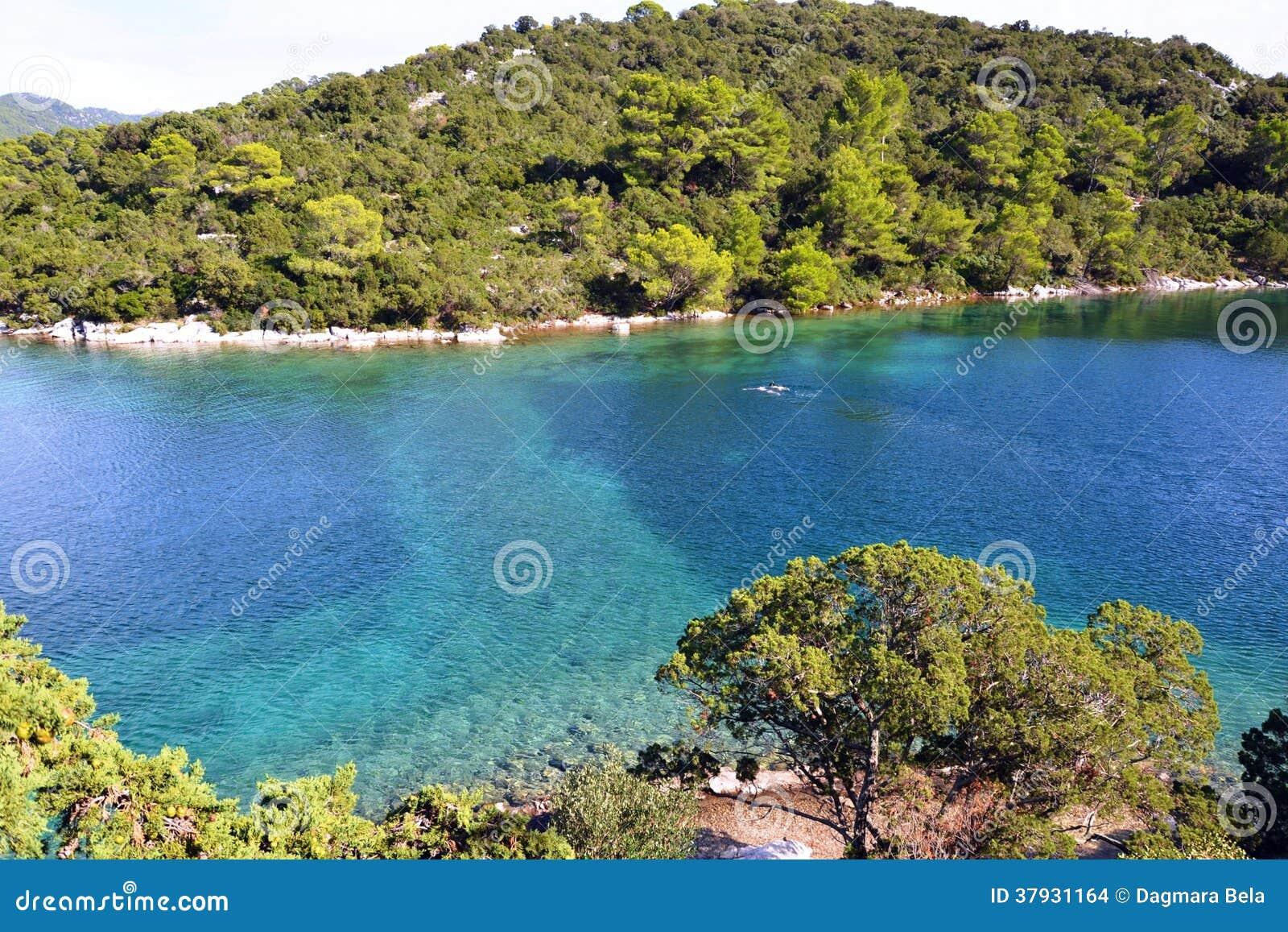Остров на большом озере в национальном парке Mljet