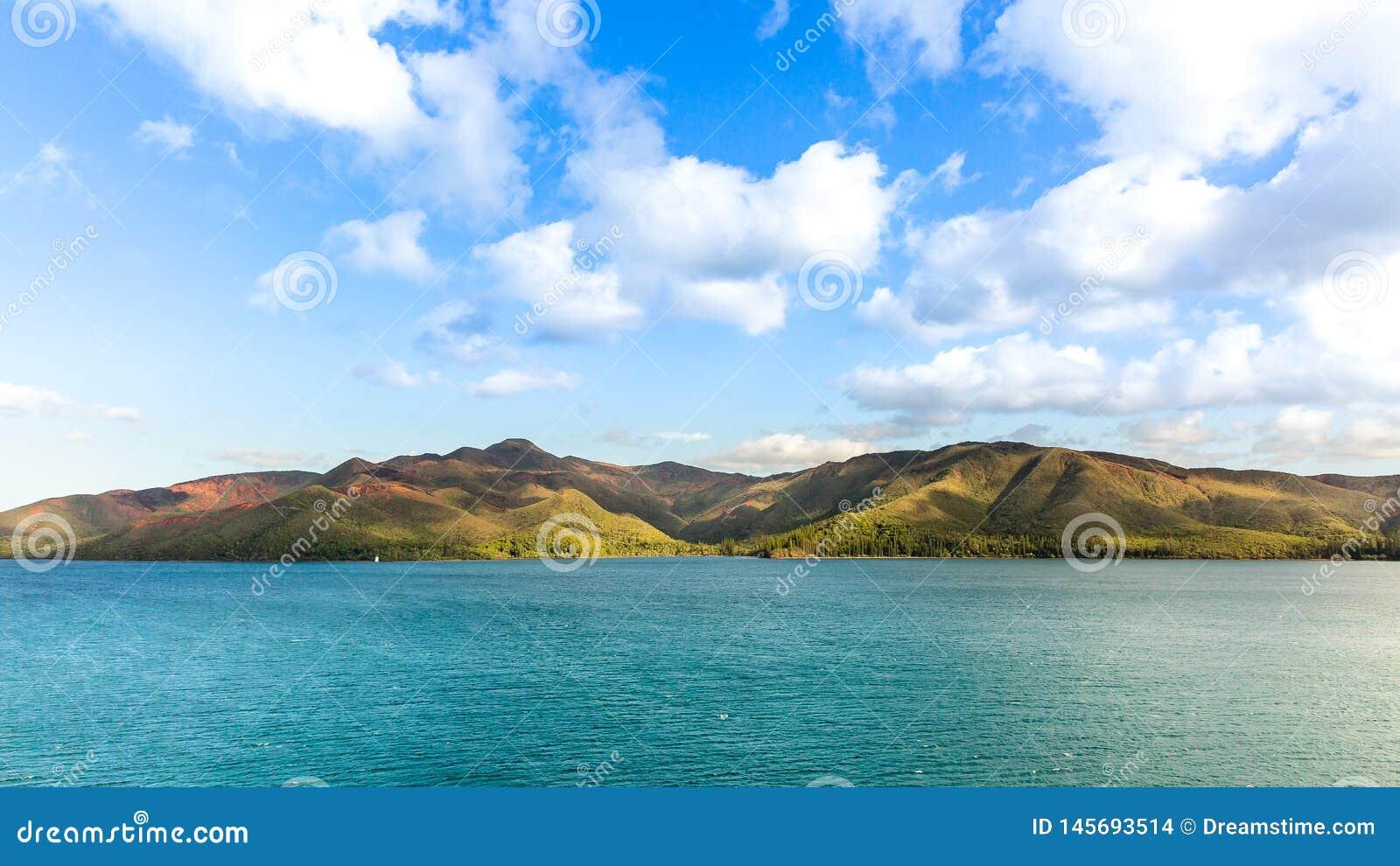 Остров сосен