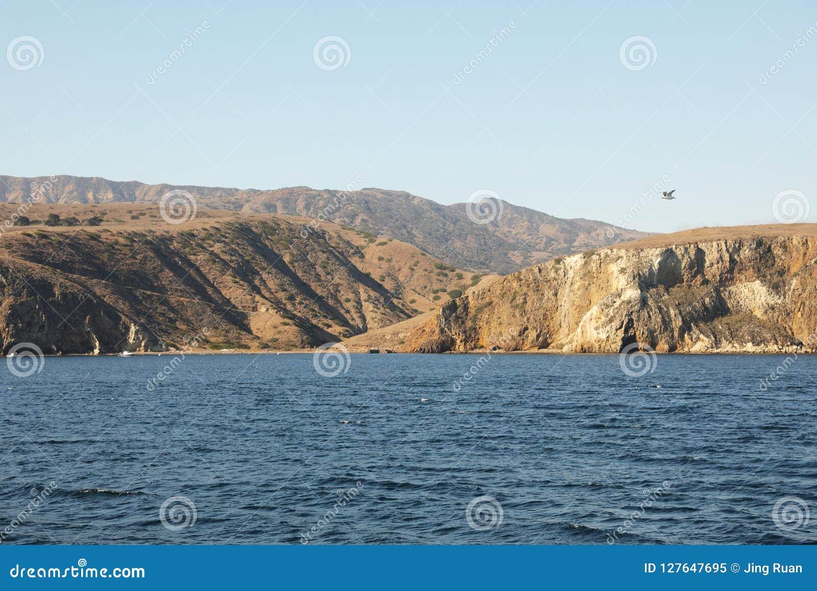 остров santa cruz