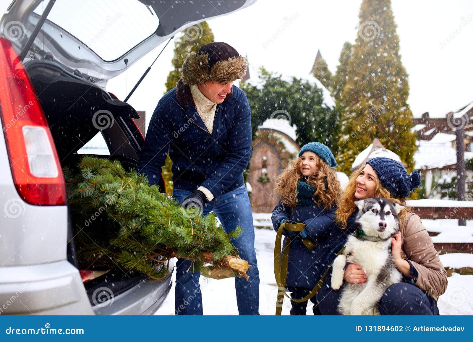 Отец принес рождественскую елку в большом хоботе автомобиля SUV Папа встречи дочери, матери и собаки счастливо помочь ему с
