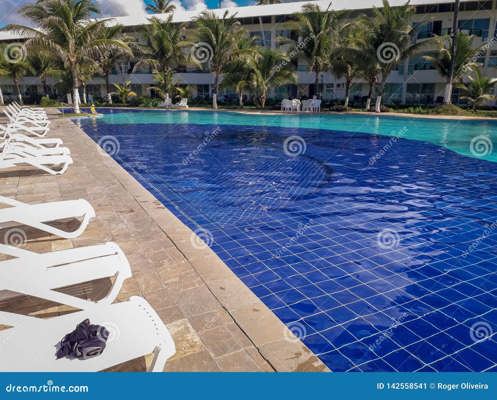 Открытый бассейн в гостинице и курорт с пальмой и стульями вокруг Бразилия 2019