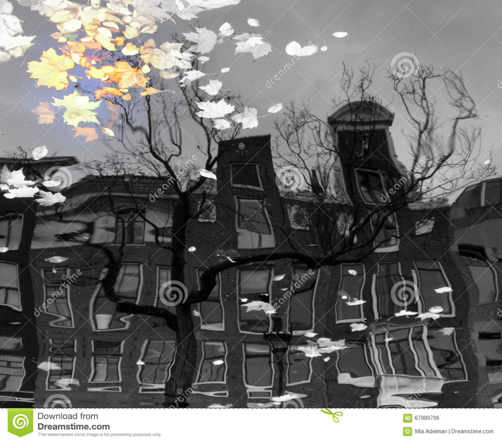 Отражение в канале Амстердама