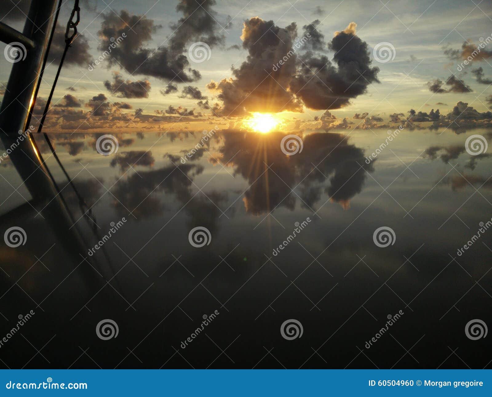 Отражение Waku