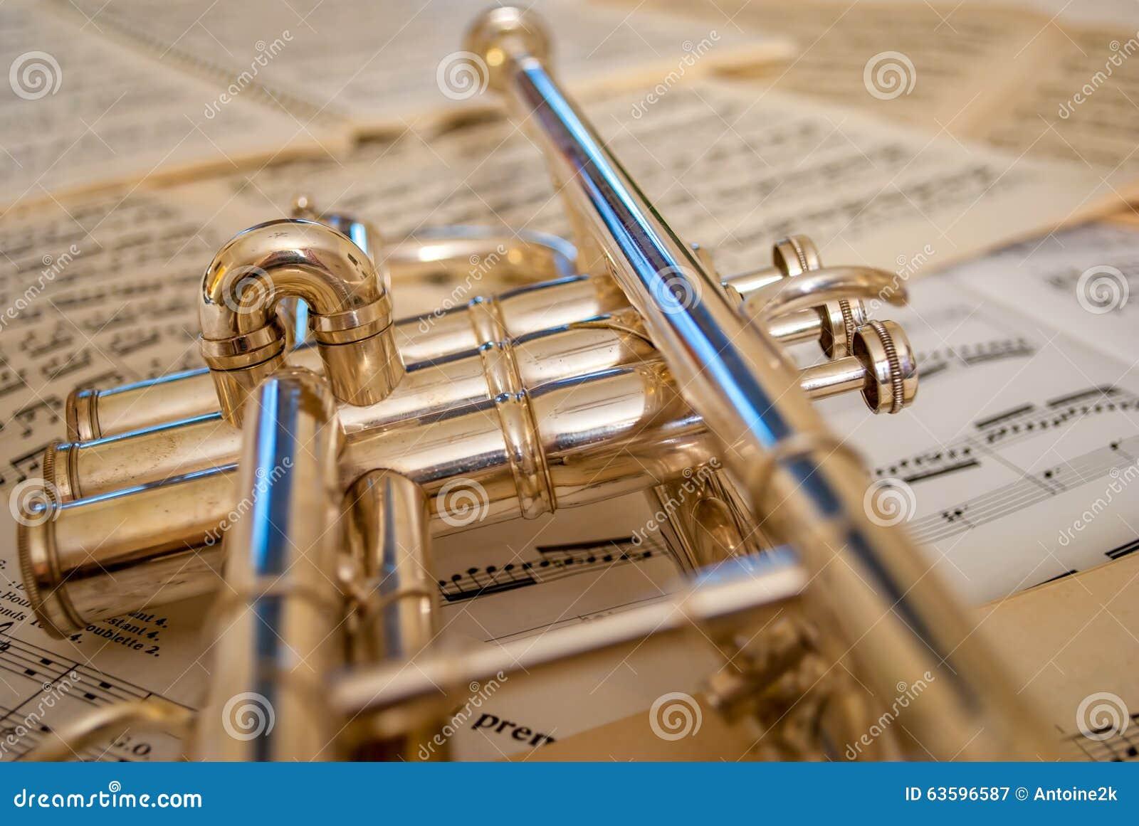 Отражения трубы