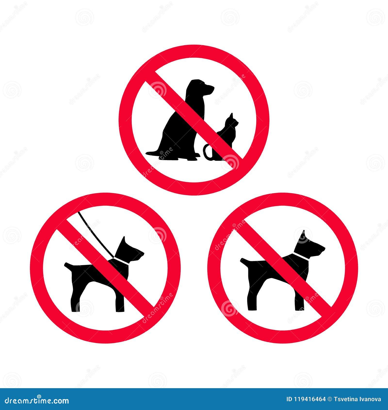 Отсутствие собак, отсутствие любимчиков, отсутствие собак поводка, отсутствие знака запрета свободных собак красного