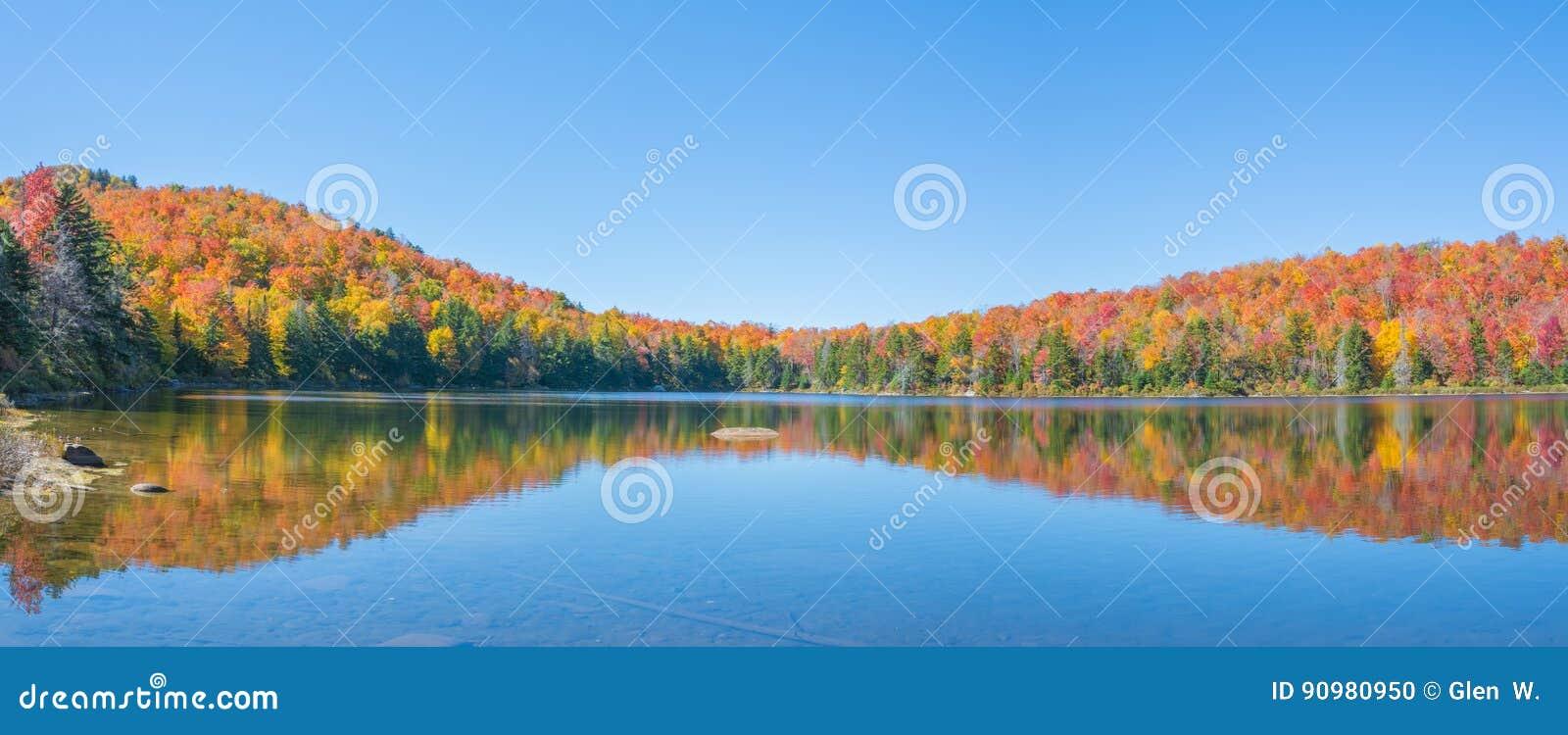 Очаровательный пруд с листопадом