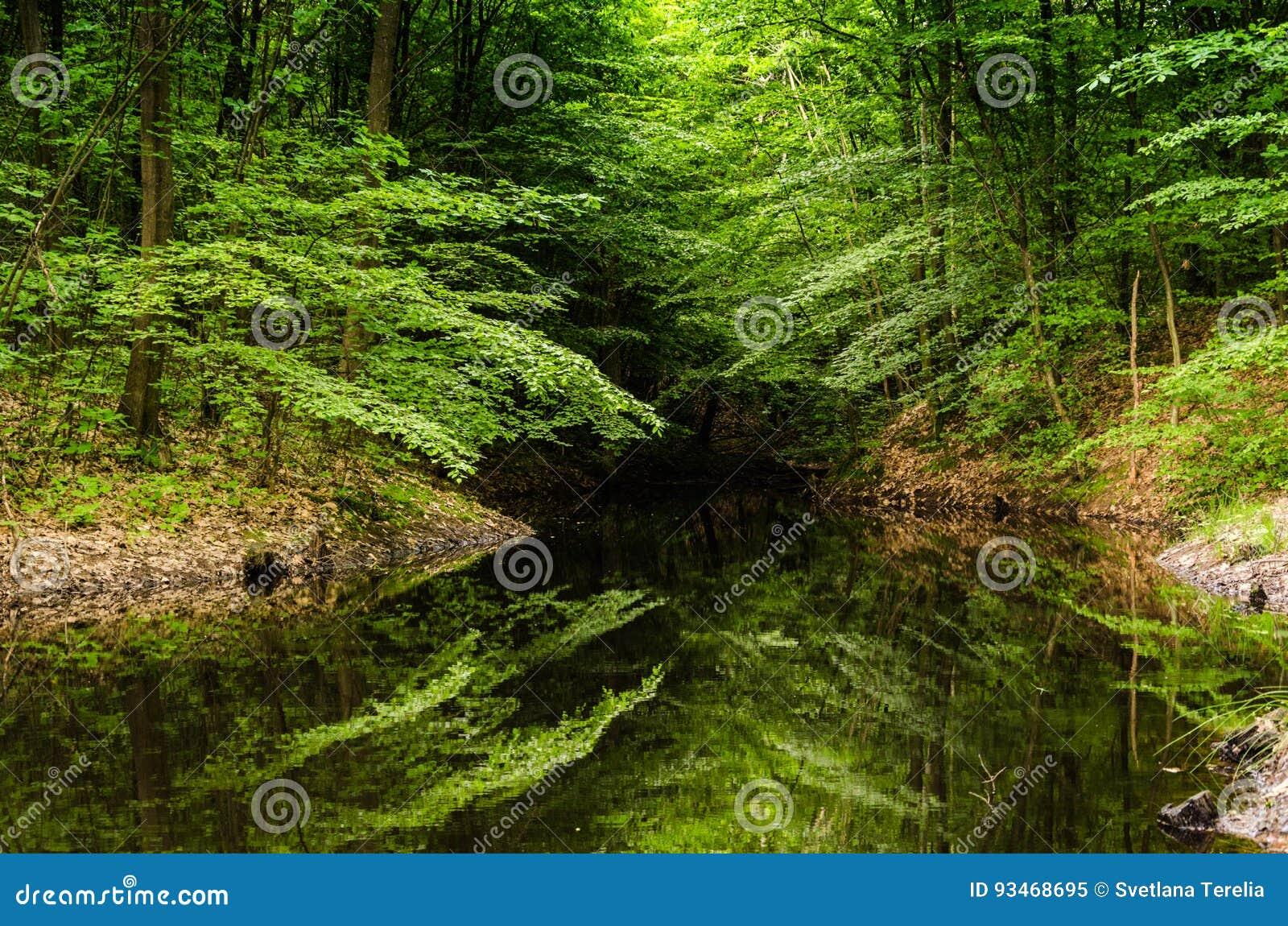 Очень красивый ландшафт лета горы горы озера lac de Франции creno Корсики корсиканские Малый потерянный lak