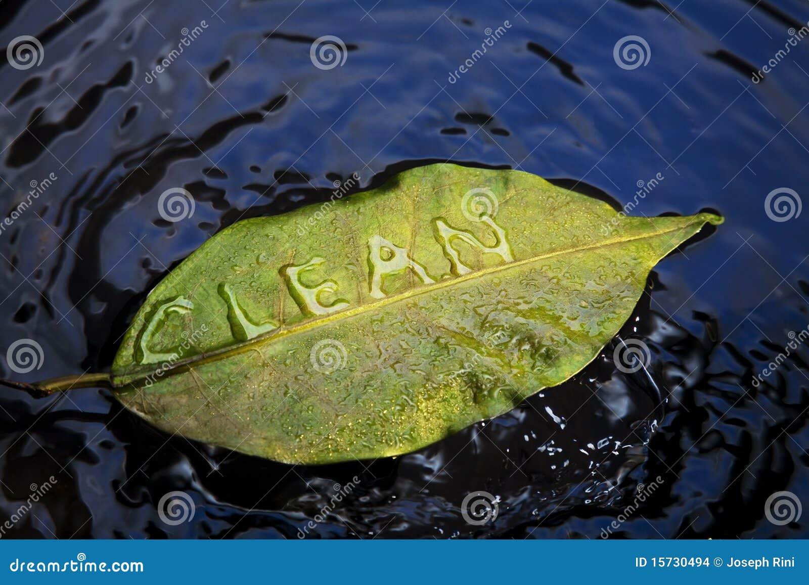 очистьте листья